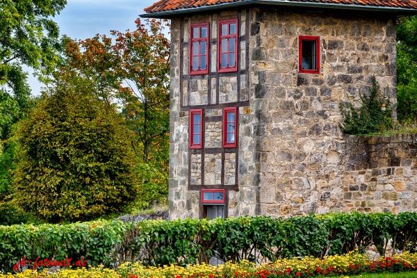 Schlosspark Blankenburg