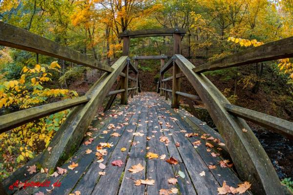 Lampenbrücke im Selketal