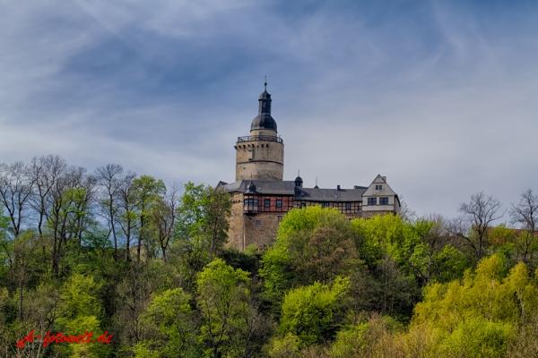 Blick aus dem Selketal auf die Burg Falkenstein Harz