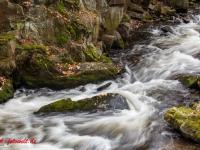 Fotokus Fotoworkshop Bodetal Harz (36 von 37)