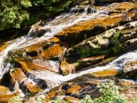 Bach Steinerne Renne Harz