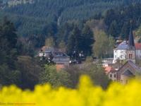 Blick nach Güntersberge im Harz