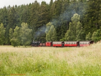 Harzer Schmalspurbahn Selketalbahn