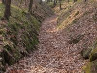 Hohlweg zur Regensteinmühle Harz