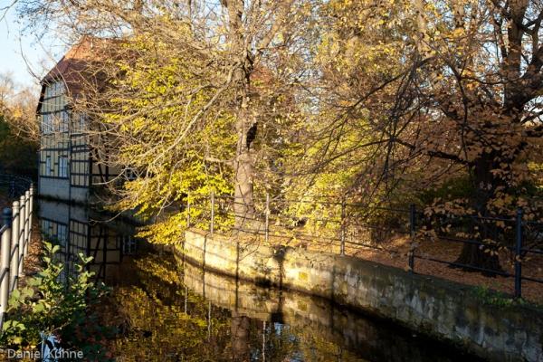 goldener Herbst Stimmung Wordgarten Quedlinburg