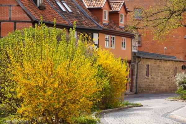 Quedlinburg im Frühjahr