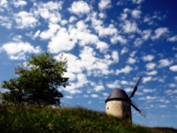 Windmühle mit Mohnblüte