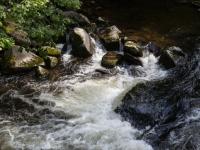 Wildwasser Bodetal Bode