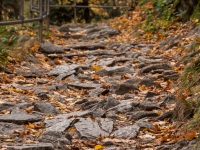 Wanderweg Harzer Hexen-stieg hier im Bodetal