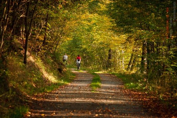 Selketalstieg im Herbst
