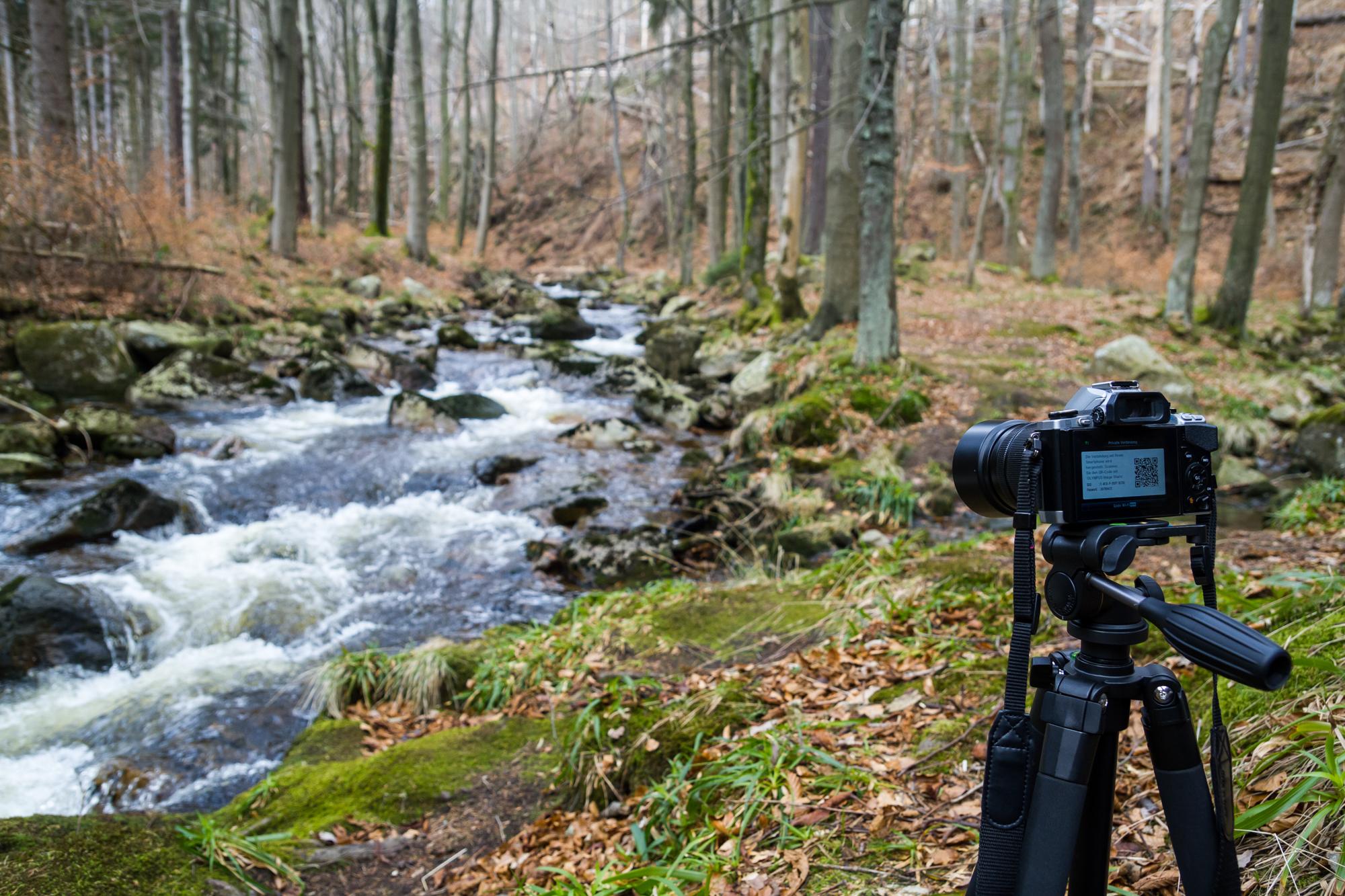 Fotokurs Erste Schritte in die digitale Fotografie
